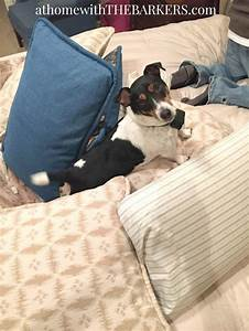 Choosing bedding at home with the barkers for Choosing pillows for bed