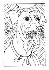 Bark Coloring Dogs Template Colour Pdf sketch template
