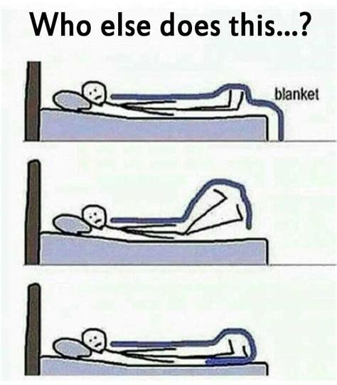Who Else Does This? Biblipole