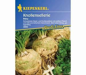 Sellerie Pflanzen Kaufen : kiepenkerl saatgut sellerie 39 prinz 39 dehner garten center ~ Michelbontemps.com Haus und Dekorationen