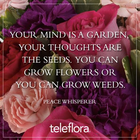 quotes growing seeds quotesgram