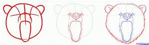 Grizzly Bear Face Drawings | www.pixshark.com - Images ...