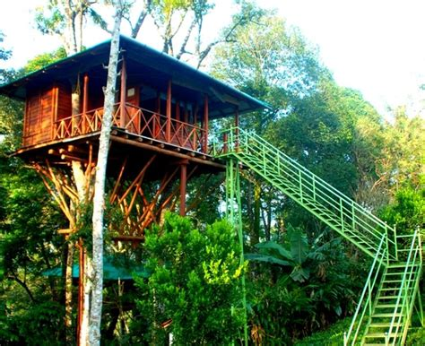 Kerala Boat House Munnar by Munnar Tree House Aleppey Boat House Package 03 Nights