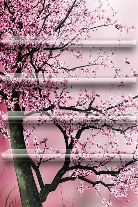 Brown Tree Iphone Wallpaper by Pink Shelf For Iphone 6 Images Pink Wallpaper
