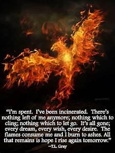 279 best Rising... Phoenix Bird Tattoo Quotes
