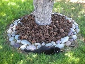 pin, on, , yard, , u0026, gardening, ideas