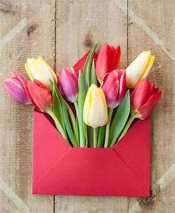 Blumen Online Verschicken NETZSIEGER