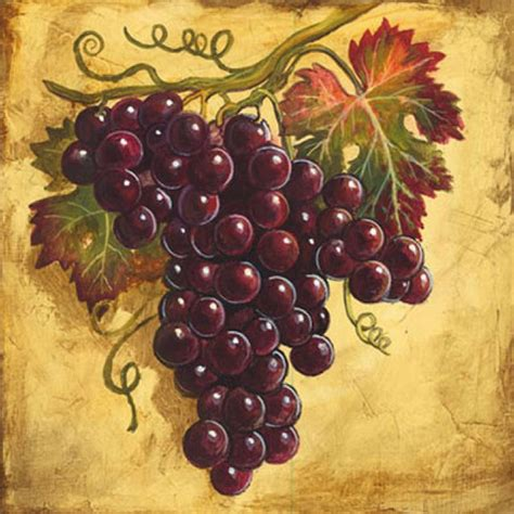 20 best images about grapes on limited edition prints watercolors and vineyard