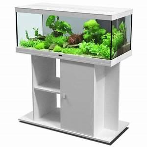 Aquarium Set Led : aquatlantis style led 100 x 40 aquarium set free p p on ~ Watch28wear.com Haus und Dekorationen
