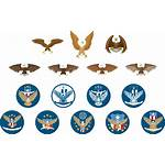 Eagle Icon Animal Emblem Screen Printing Pixabay