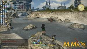 Subscription MMORPGs And MMOs