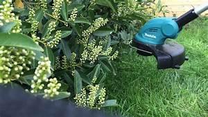 Makita Rasentrimmer Akku 18v Test : vorstellung und test des makita 18v akku rasentrimmers dur181 makita battery lawn trimmer 18v ~ Watch28wear.com Haus und Dekorationen