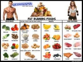 fat burning foods ary news press release blog 5 fat burning foodsary ... Dietary Fats