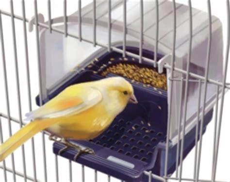 Mangiatoie Per Uccelli Da Gabbia Mangiatoia Antispreco Quale La Migliore Forum Hobby