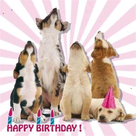 dogs  singing   birthday  happy birthday