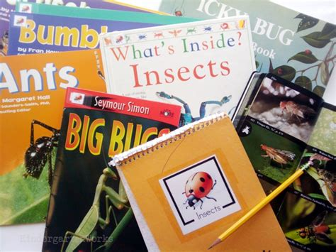 insects non fiction literacy center activity 157 | Non Fiction Literacy Center for Kindergarten insect books