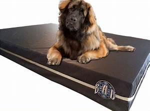 Dark brown xl chew proof dog bed the best dog bed for for Dog beds for destructive dogs