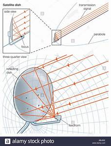 Satellite Dish Shaped Like A Portion Of A Paraboloid In