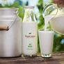 Daulat Farms | Daulat Farms Group of Companies | Daulat ...