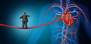 Risk Factors For Cardiovascular Disease Quizlet