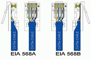 Ieee 568b Wiring Diagram