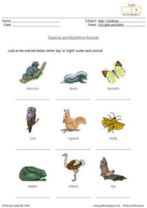 images  day night  pinterest worksheets