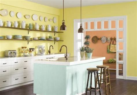 paint color   kitchen shine