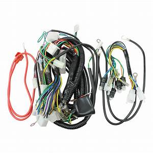 Wiring Harness  50cc Scooter Vip