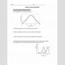Enzyme Activity Worksheet  Name Date Enzyme Activity Worksheet Part 1 Temperature And Enzyme
