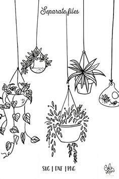 13 Best Succulent & Cactus Coloring Books & Pages