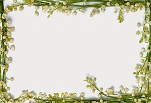 [flower border pictures] - 28 images - flower border new