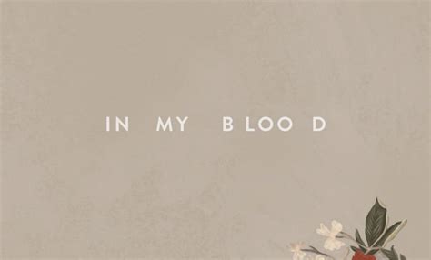 Shawn Mendes Releases New Song 'in My Blood' After Teasing