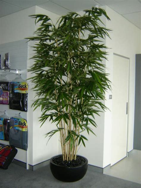 plante verte salle de bain plante artificielle de faux v 233 g 233 taux plus vrais que nature archzine fr