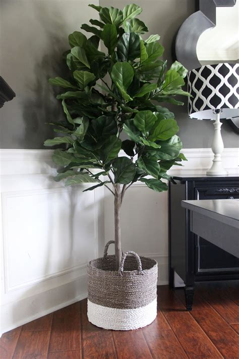 artificial plants for home the yellow cape cod if you heard me snub plants 4188