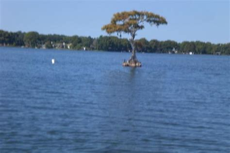 Lake Virginia Winter Park Boat Tour by Scenic Boat Tour Picture Of Lake Virginia Winter Park