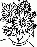 Coloring Sunflower Pages Colouring Flowers sketch template