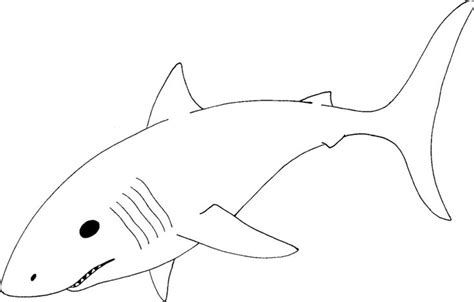 shark template shark template coloring pages