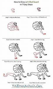 How to draw a frilled lizard | How to draw | Pinterest ...