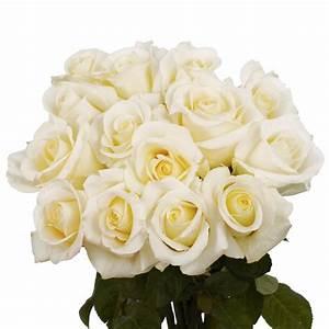 Globalrose Fresh White Roses Valentine's Day Flowers (100 ...