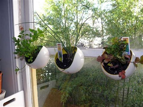 Window Herb Pots by The Non Opening Kitchen Window Ceramic Herb Pots Hanging