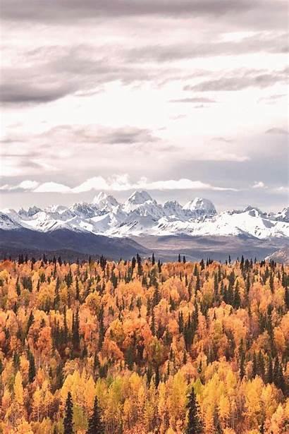 Autumn Fall Foliage Road Scenery Alaska Usa