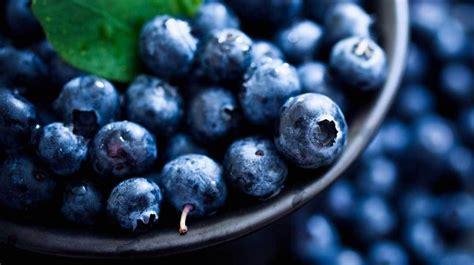 kidney foods blueberries disease kidneys nutrition