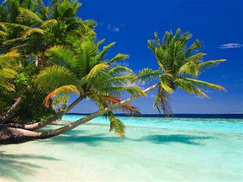 maldives ocean indian holidays holiday travelbag destinations perfect