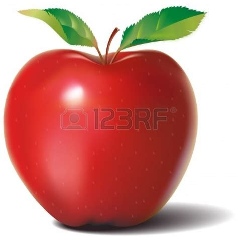 realistic apple tree drawing pin apple tree clipart on