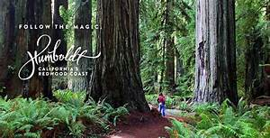 Humboldt County Norm | Pamela Foster, Author and Speaker