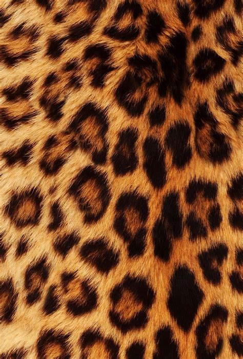Leopard Animal Print Wallpaper - 1000 ideas about leopard print background on