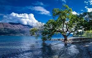 Lake Wakatipu  Queenstown  New Zealand Landscape Wallpaper Hd   Wallpapers13 Com
