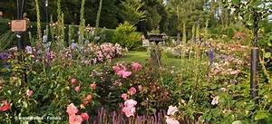 Blumen Für Schattigen Balkon : pflanzen f r balkon und garten ~ Orissabook.com Haus und Dekorationen