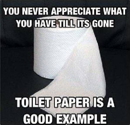 Toilet Paper Roll Meme - you never appreciate what you have till it s gone toilet paper is a good exle some things