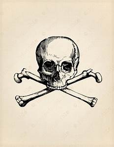 SKULL AND CROSSBONES Instant Download Skeleton Pirate